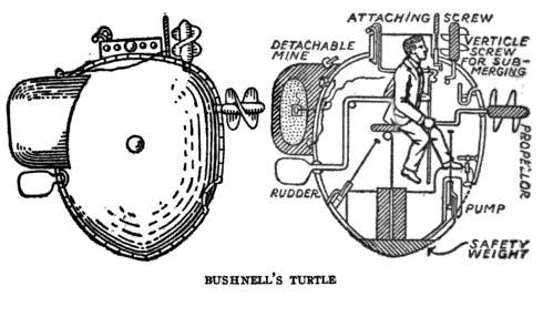 Turtle Bushnell