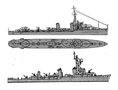 evolution 1951-1962